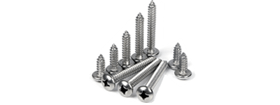 Hastelloy C276/C22/B2/X Screws
